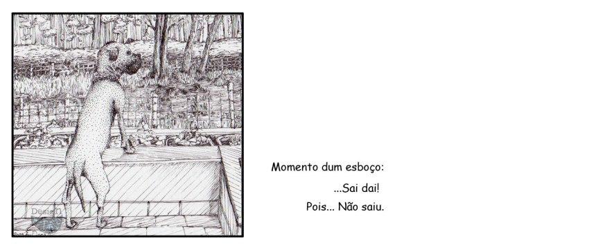 imagem_3